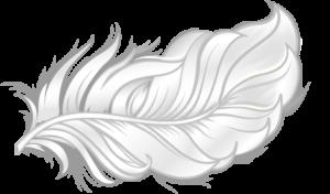 Feather icon illustrating softness of bamboo bedding fabrics